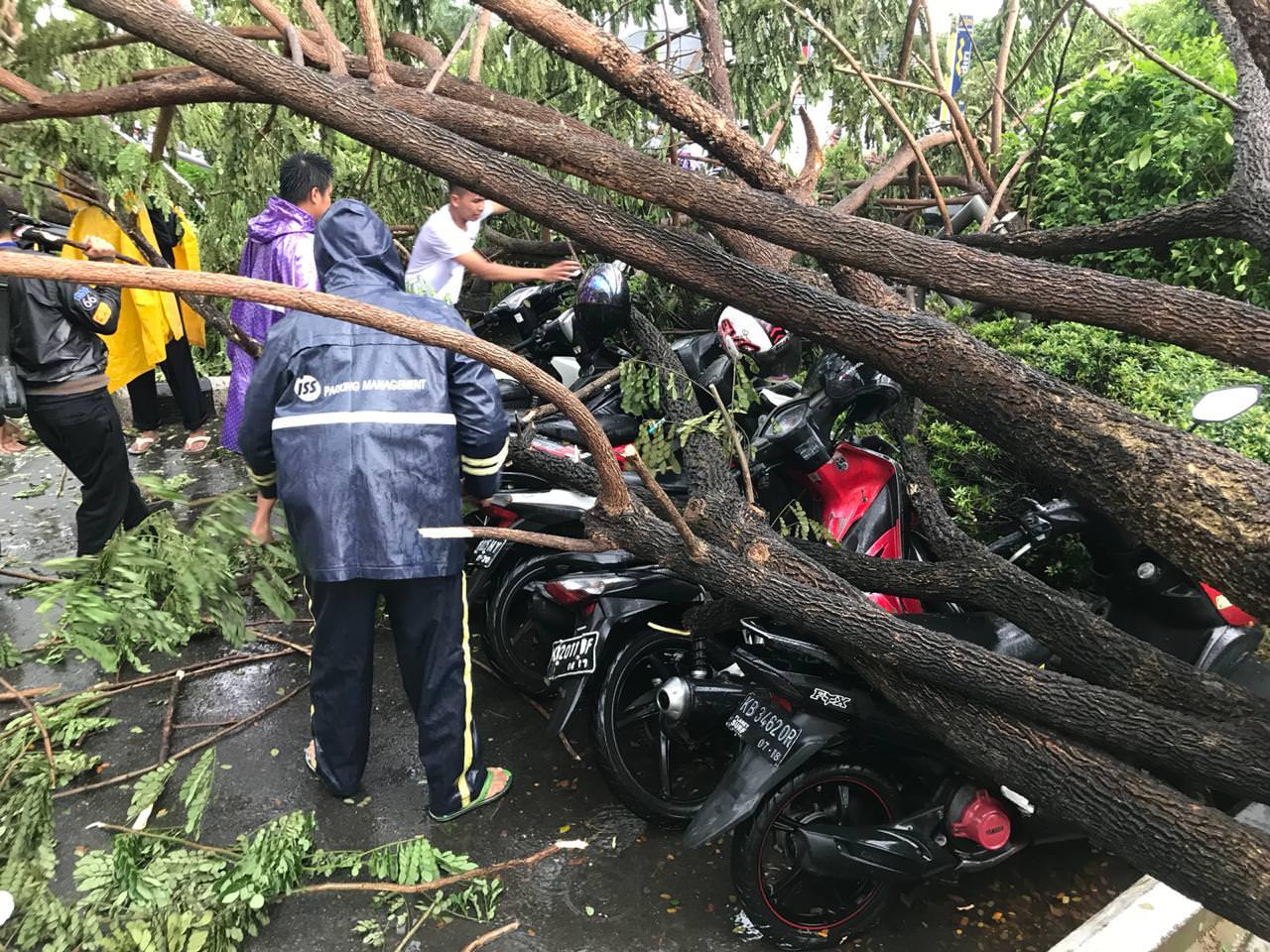 Hujan Ekstrem dan Angin Kencang, Pohon, Baliho Tumbang, Jalan Macet Parah